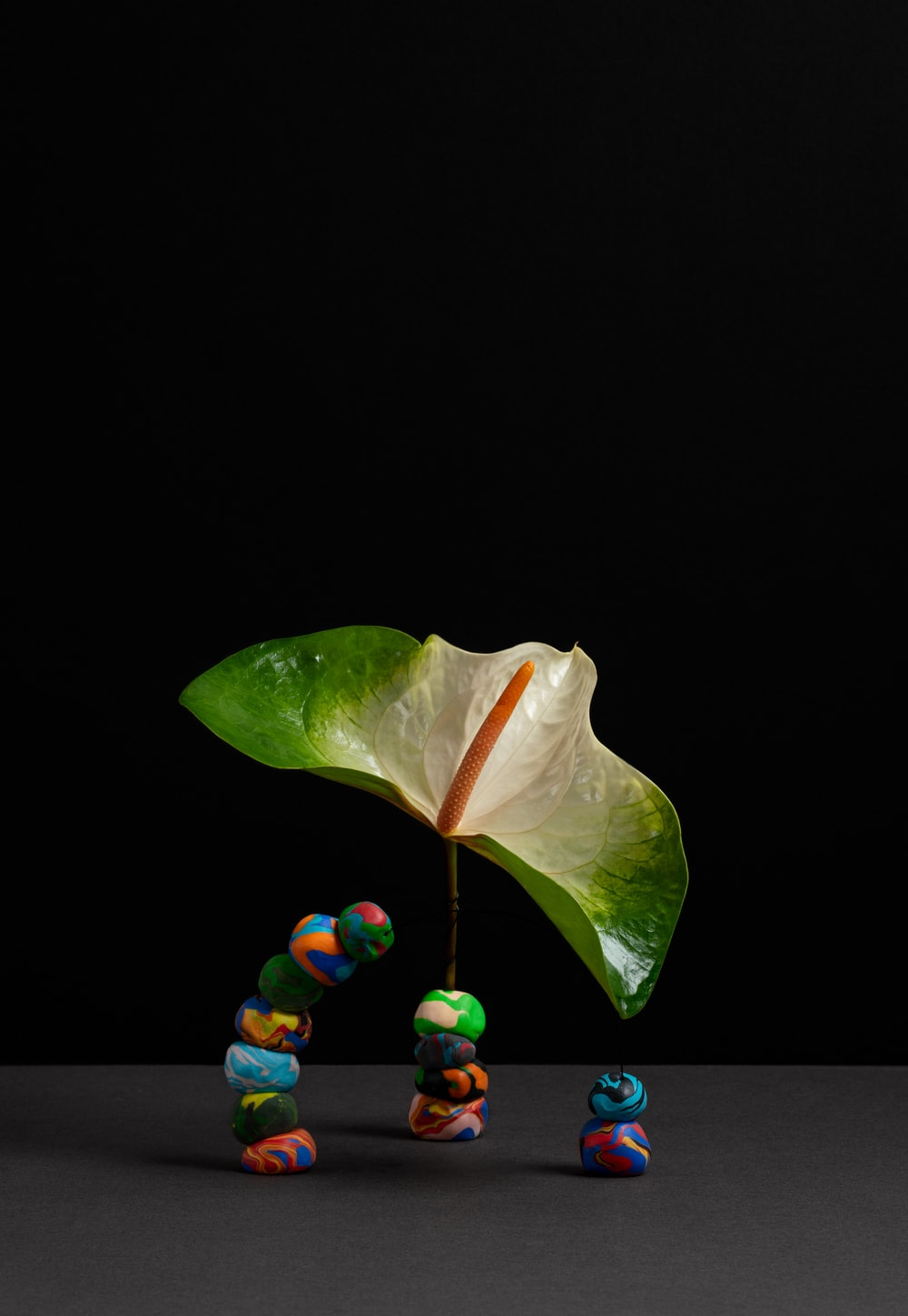 green and yellow leaf with black background