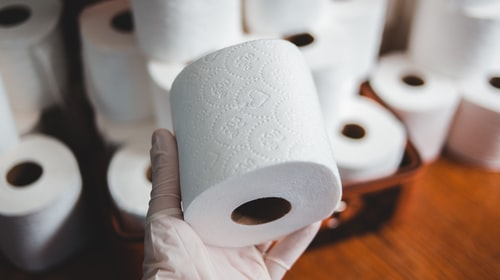 Everyone criticizes plastic, but nobody remembers toilet paper: for it, we are destroying forests around the world
