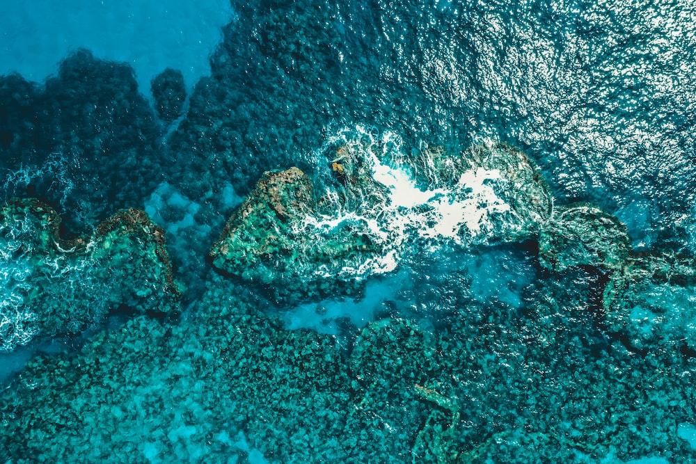 ᐈ Underwater stock cliparts, Royalty Free aquarium undersea cave vectors |  download on Depositphotos®