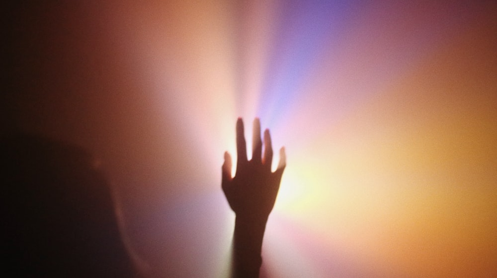 persons left hand on purple and pink light