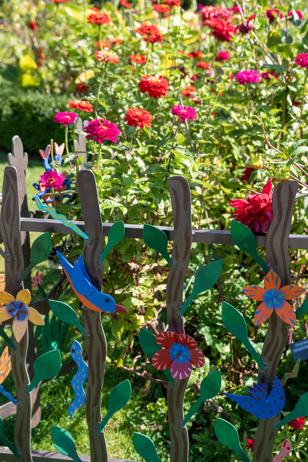 pink and yellow flowers on brown wooden fence