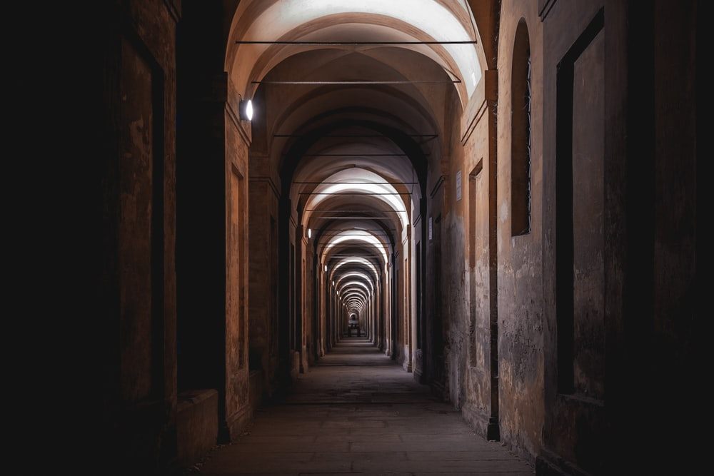 brown and white tunnel with light