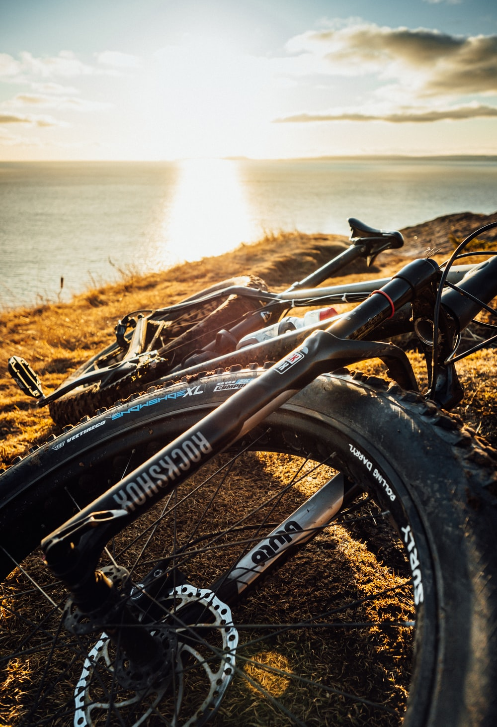 black bicycle on brown grass near body of water during daytime
