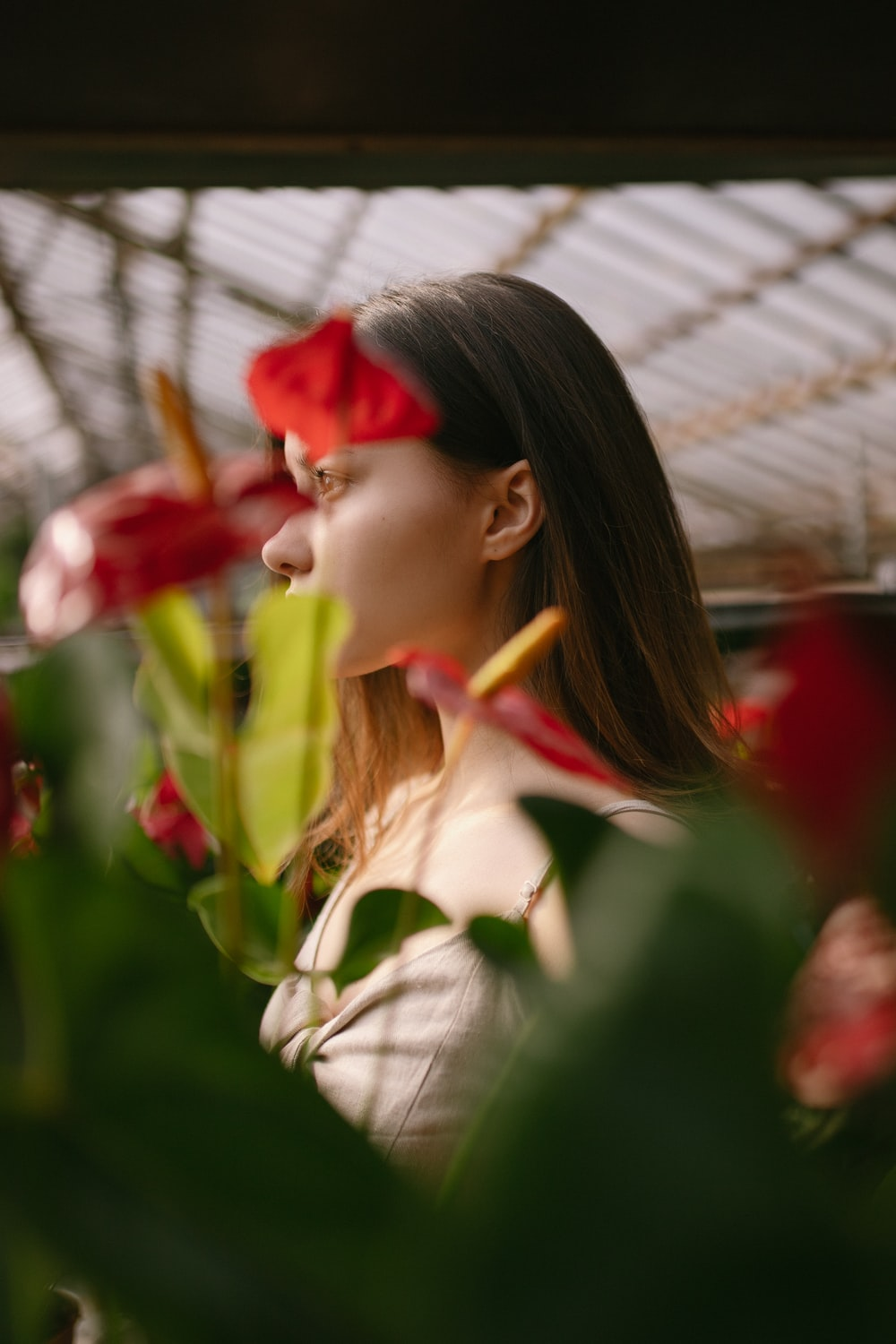 woman in white dress shirt holding red flower during daytime