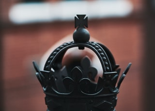 black metal bird ornament in close up photography
