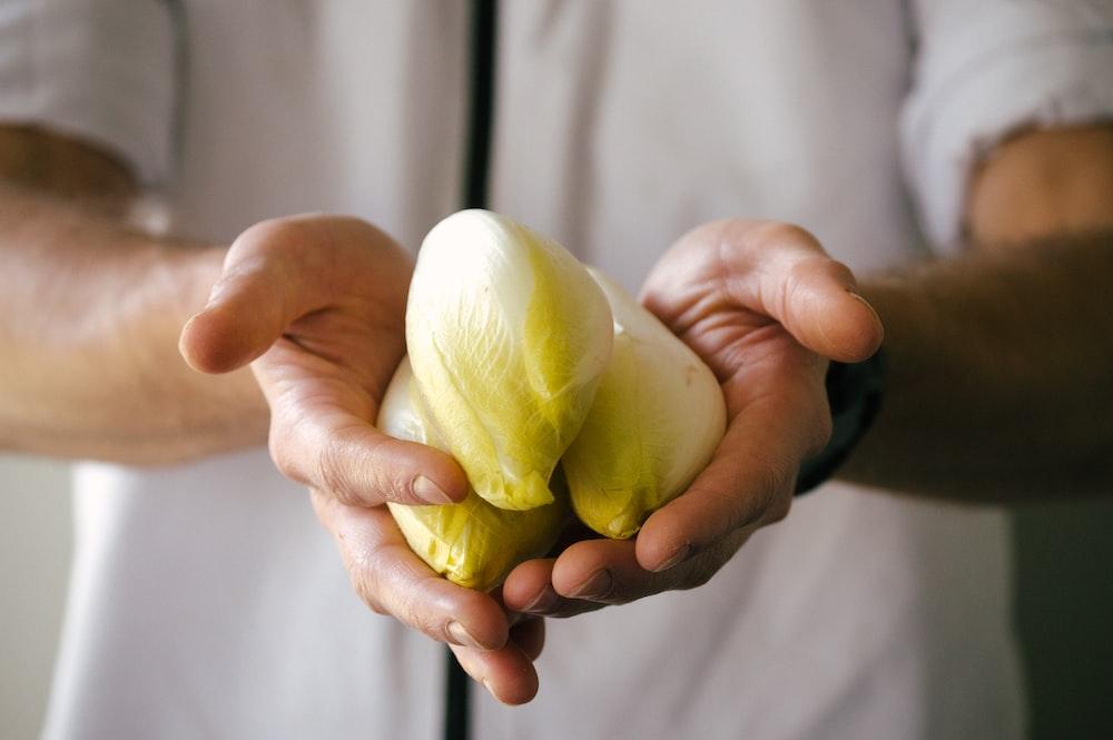 person holding white garlic bulb