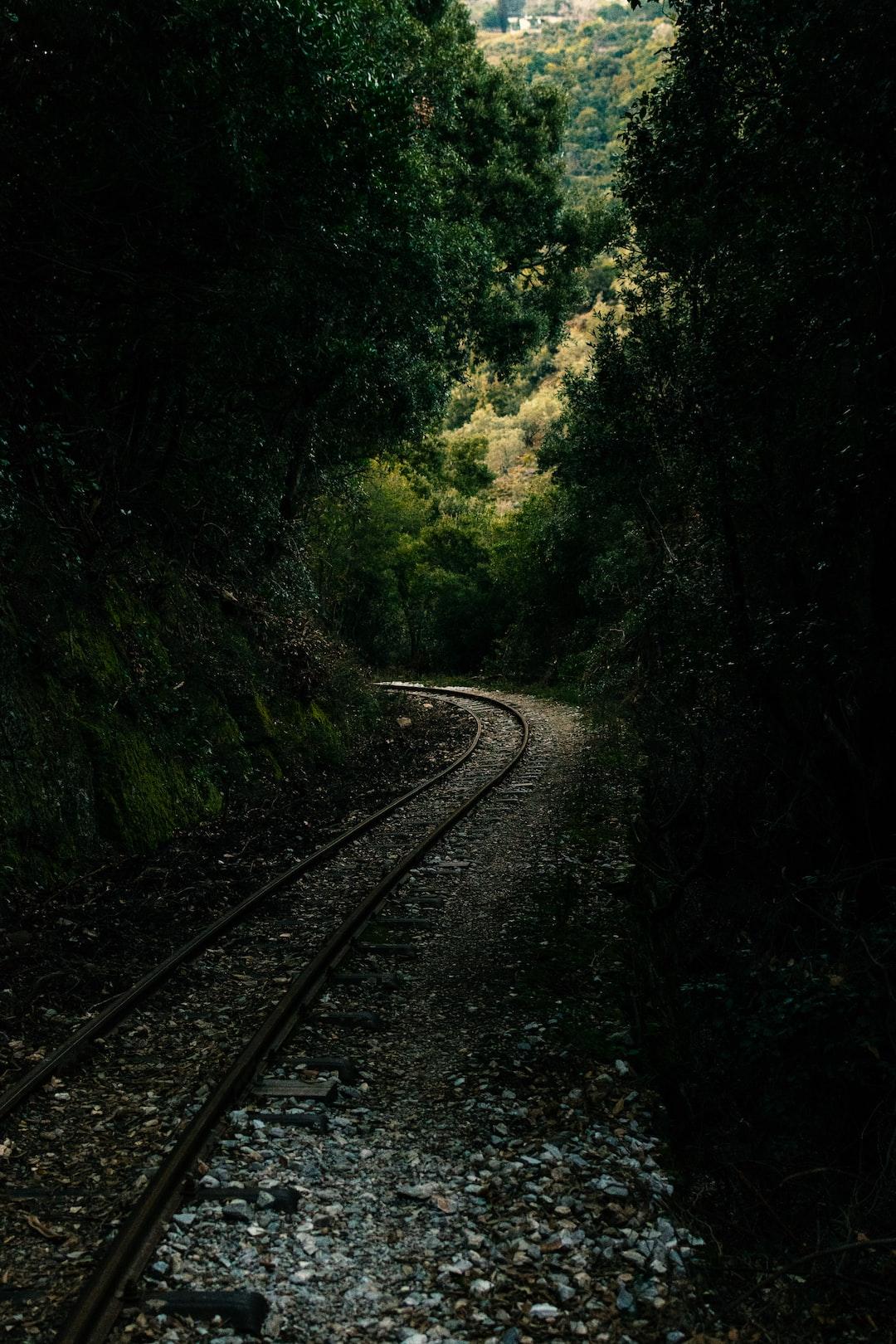 Railroad tracks on a mountain path.