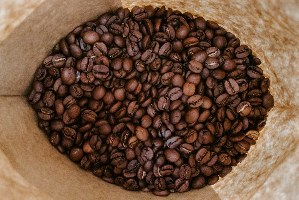 brown coffee beans on brown paper