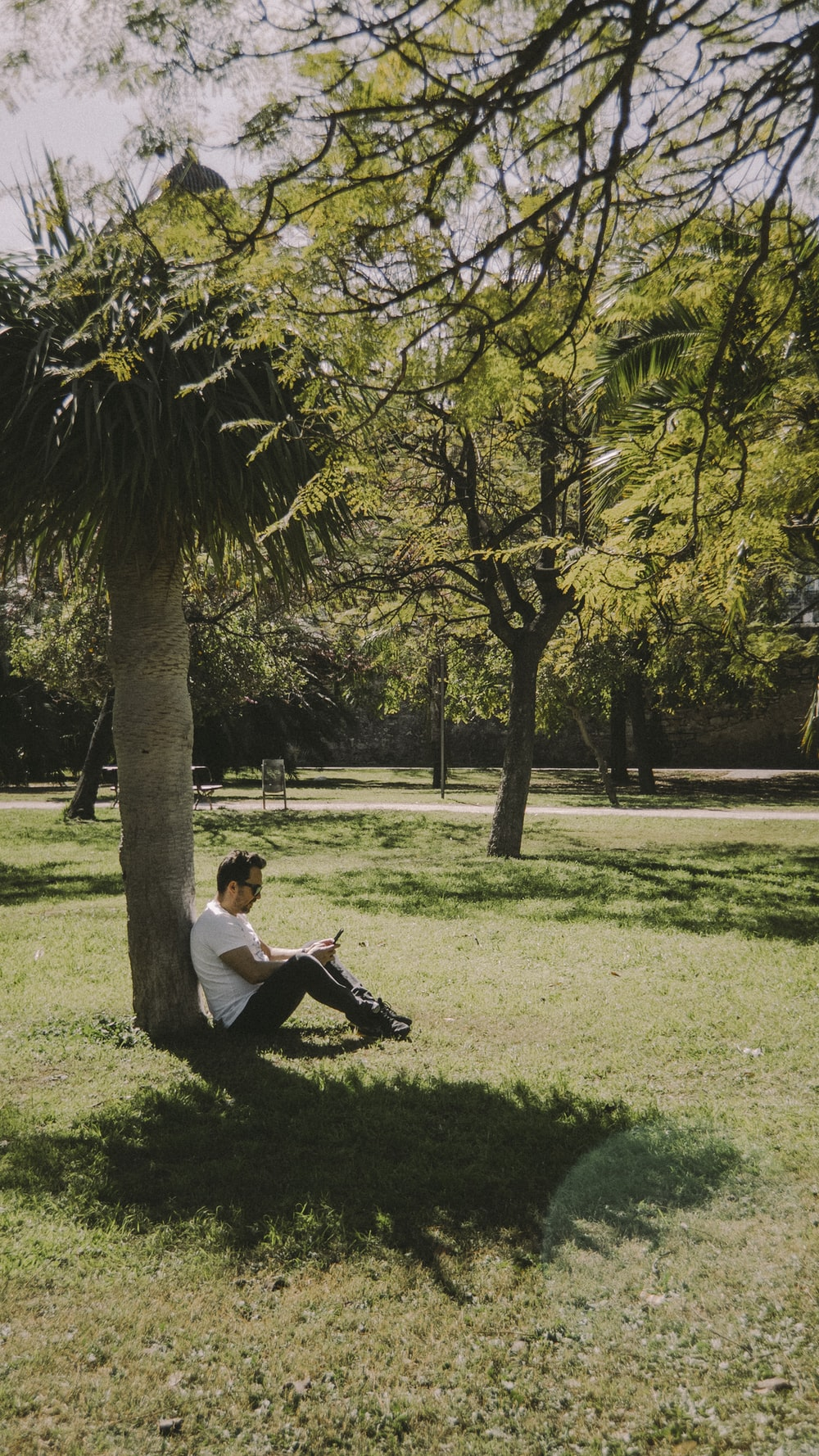 man in white t-shirt sitting on green grass field near green tree during daytime