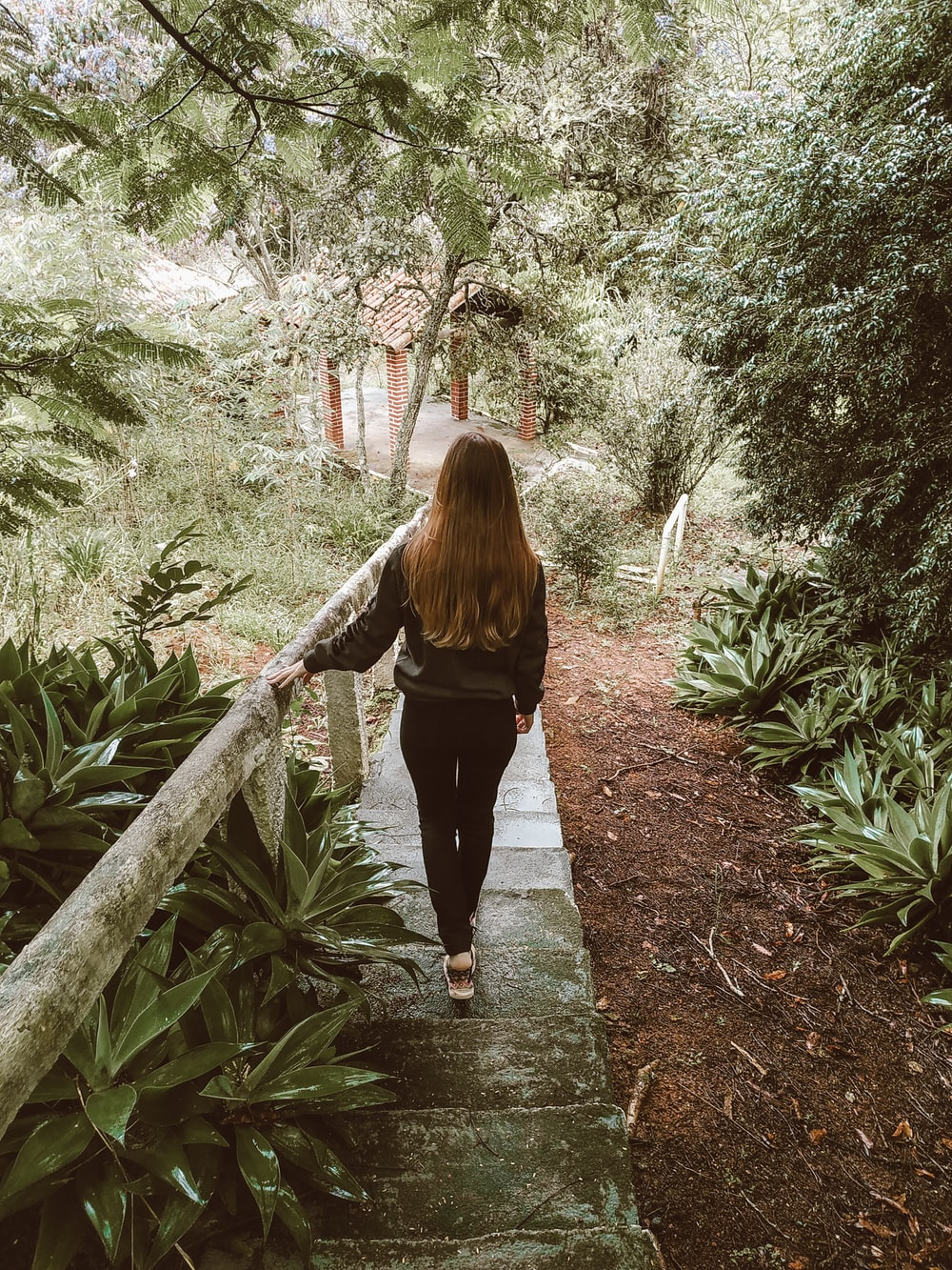woman in black long sleeve shirt and black pants walking on pathway between green plants during