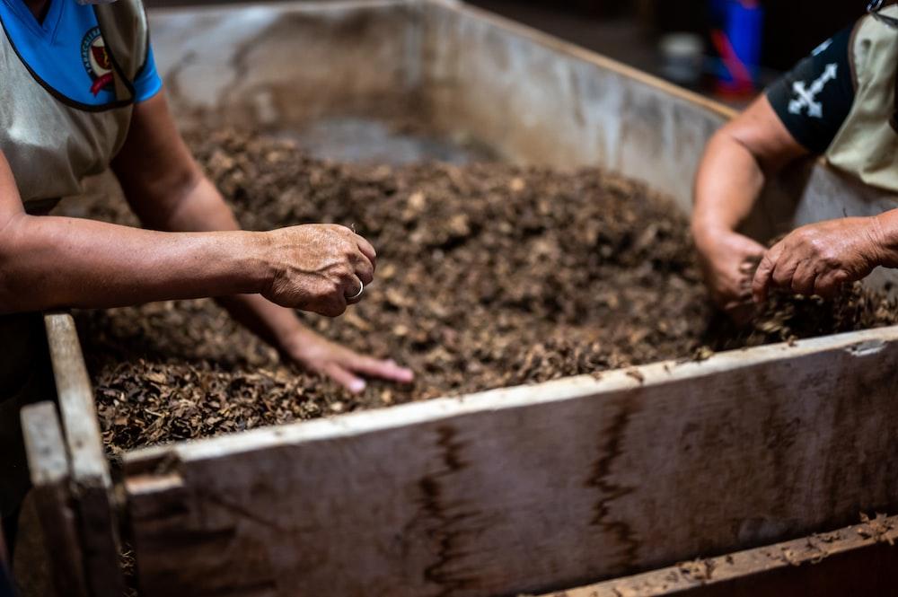 person holding brown soil in tilt shift lens