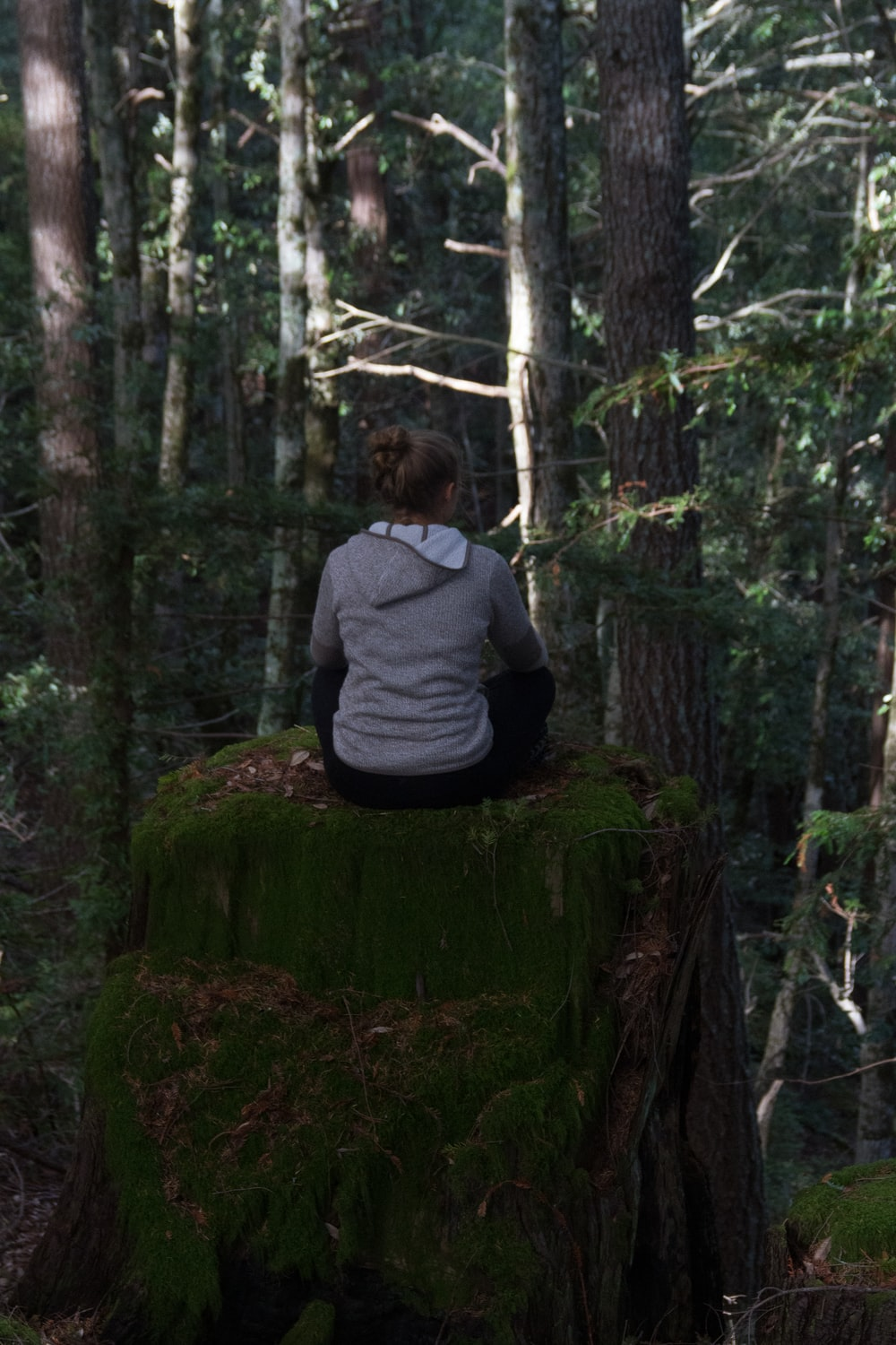 man in gray hoodie sitting on tree log