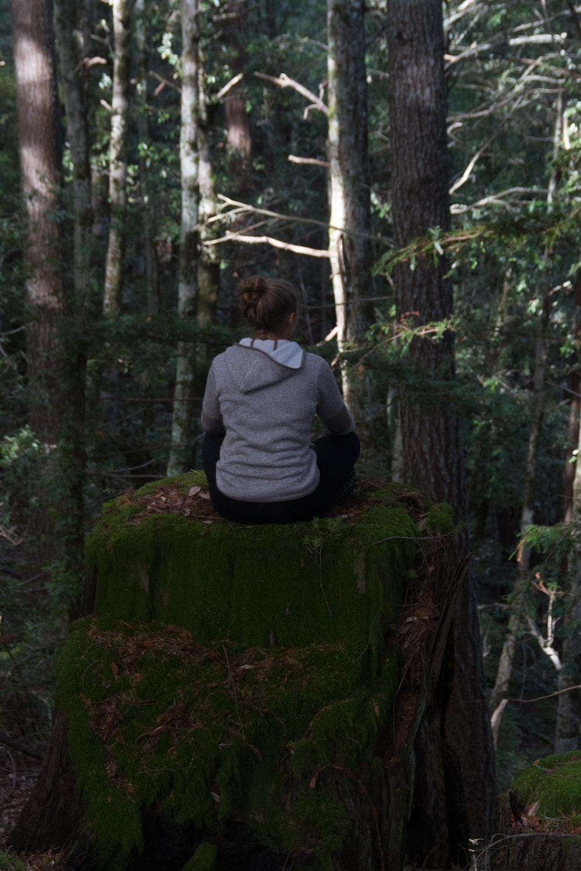 man in gray hoodie sitting on tree log