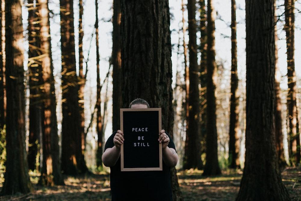 black wooden frame on brown tree trunk