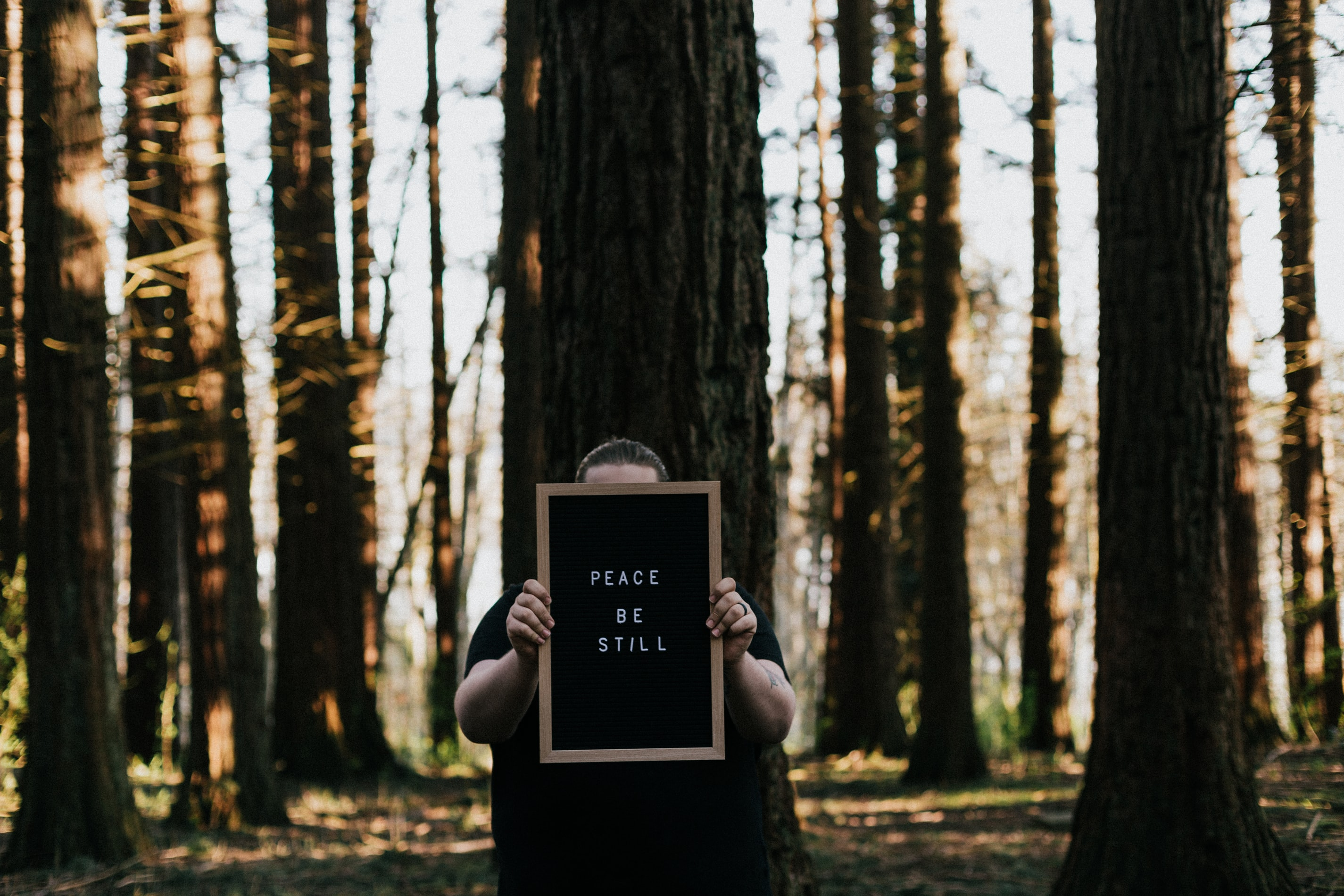 man in forest with sign reads peace be still trees