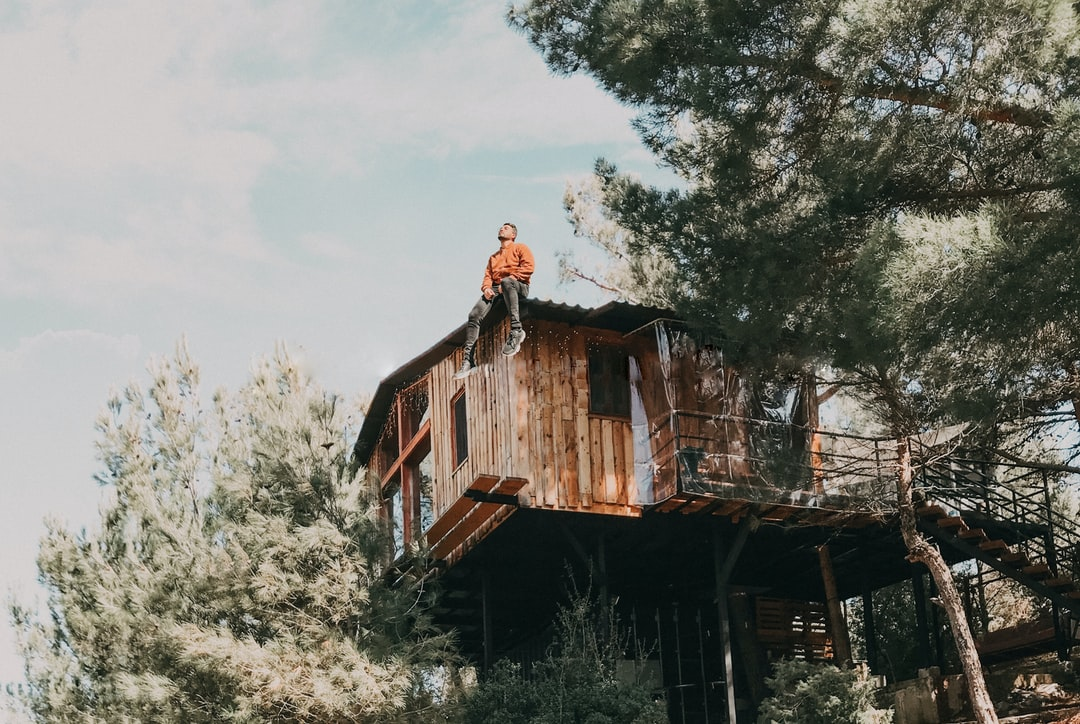 Sitting on the top of a wooden tree house located in the middle of the forest between pine trees in the heart of nature.