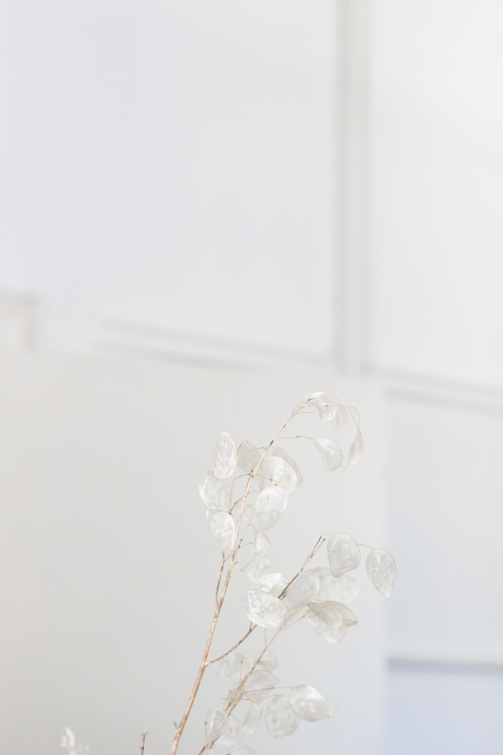 white floral glass table decor