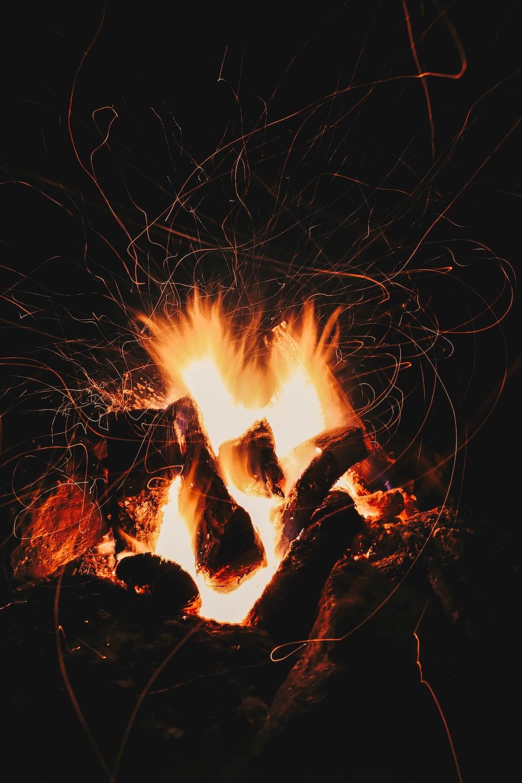 burning wood on brown soil