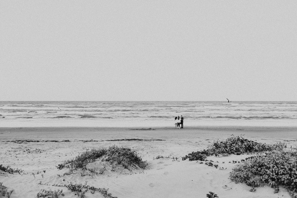 2 people walking on beach during daytime