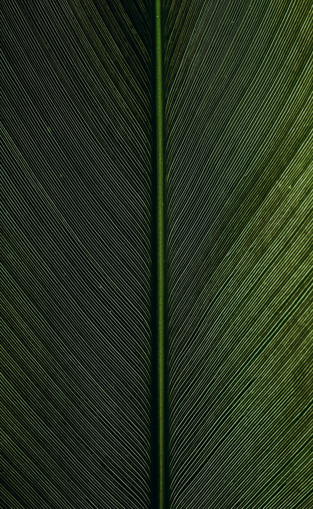 green metal rod on black and white pinstripe textile
