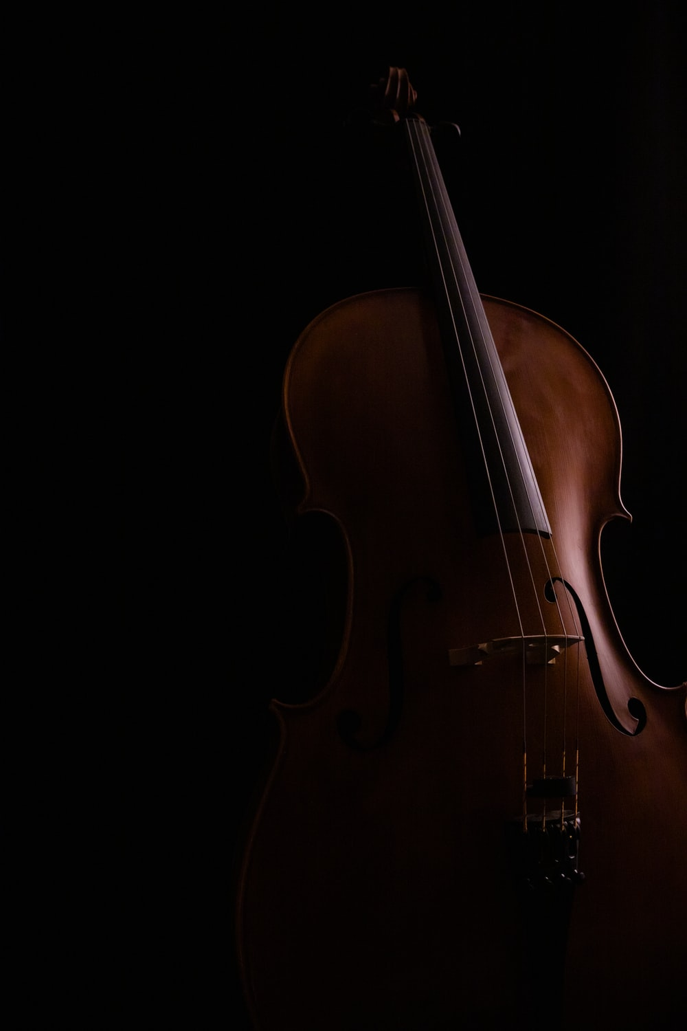 brown violin with black background