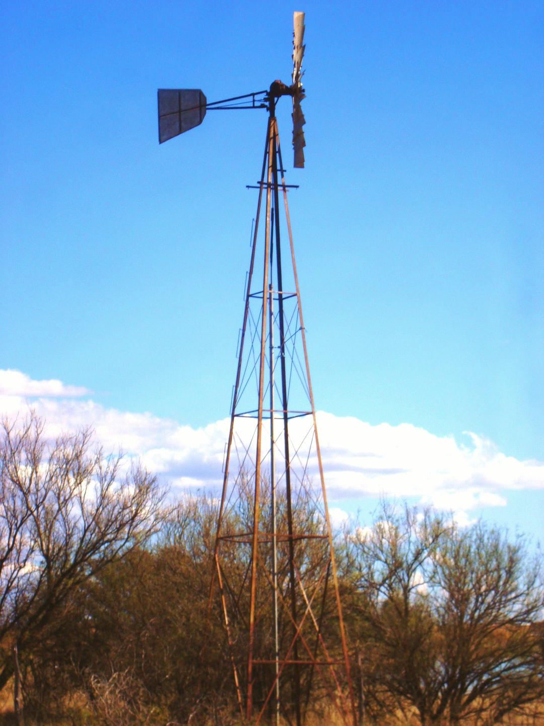 Mennonite windmill, water pump surrounded by shrubs under partly cloudy skies.