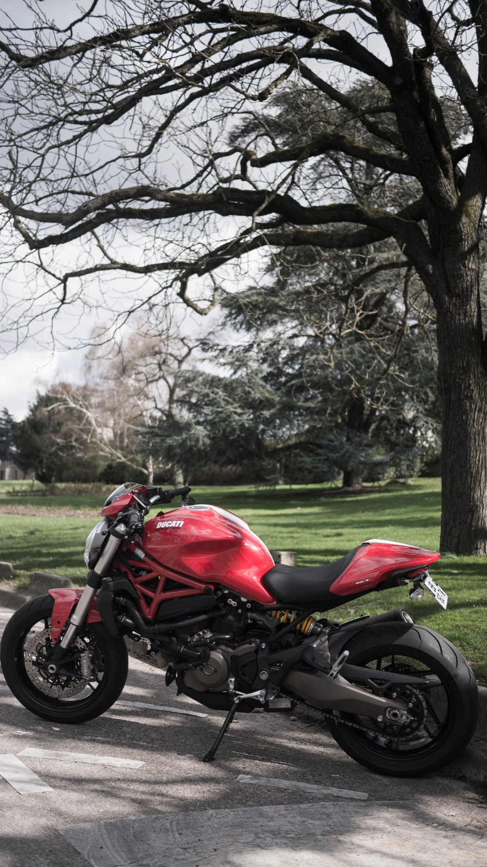 red and black motorcycle parked on green grass field near brown trees during daytime