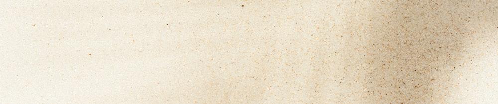 FrogDAO Dime header image