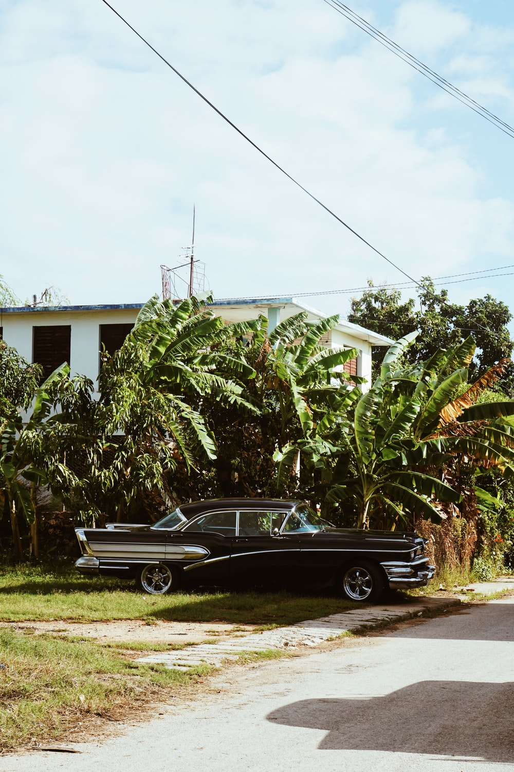 black coupe parked beside green tree during daytime