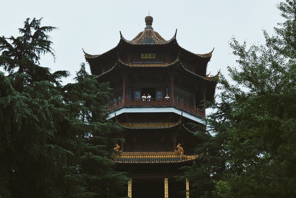 brown and black temple surrounded by green trees during daytime