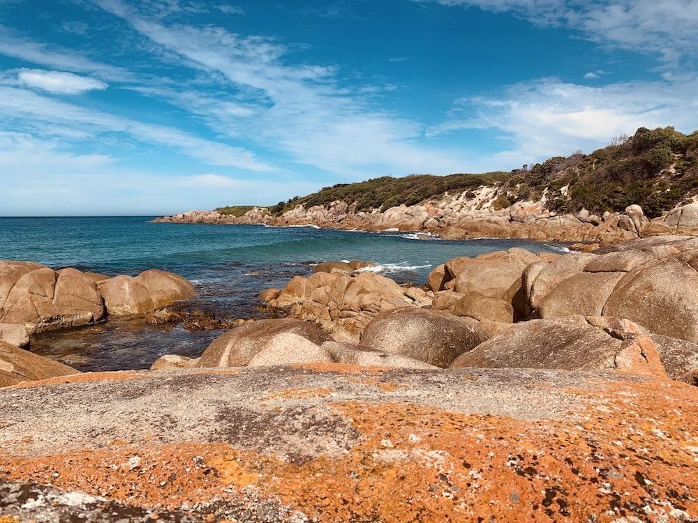 brown rocks on seashore under blue sky during daytime
