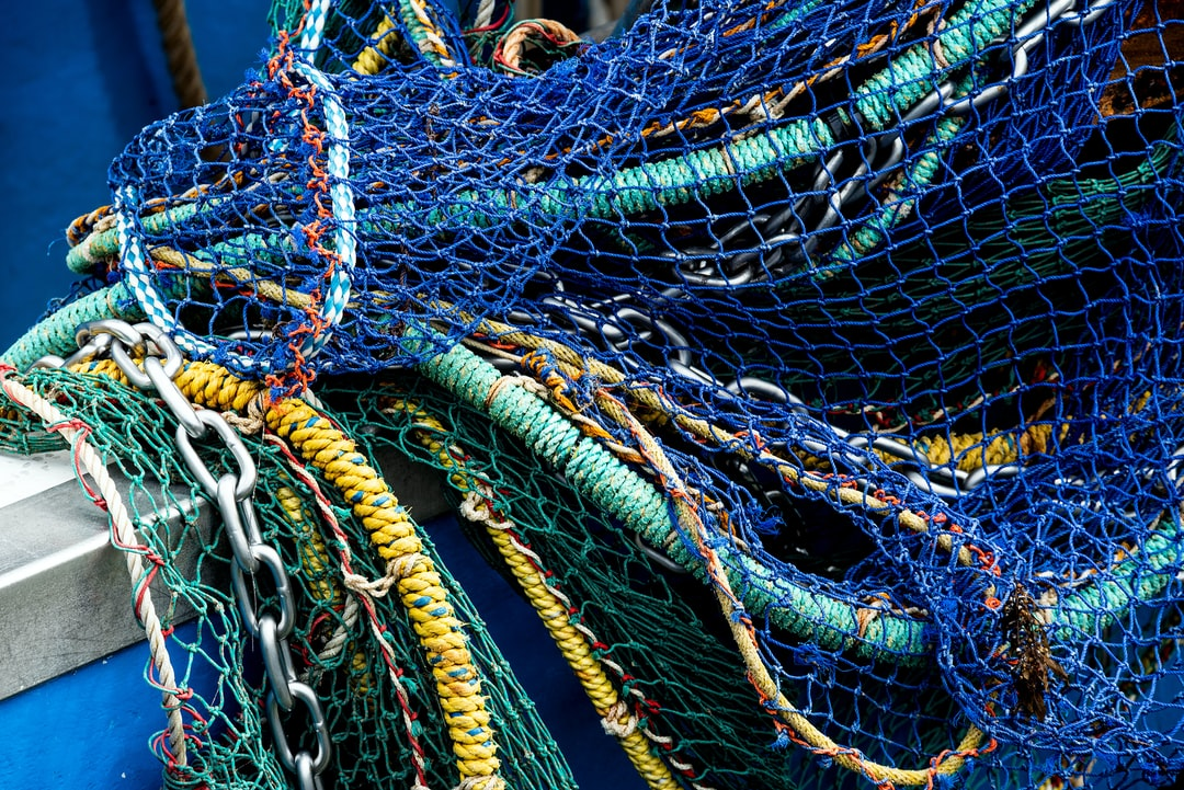 Blue fishing net. I like the smorgasbord of interesting textures and colours you can find in and around fishing boats.