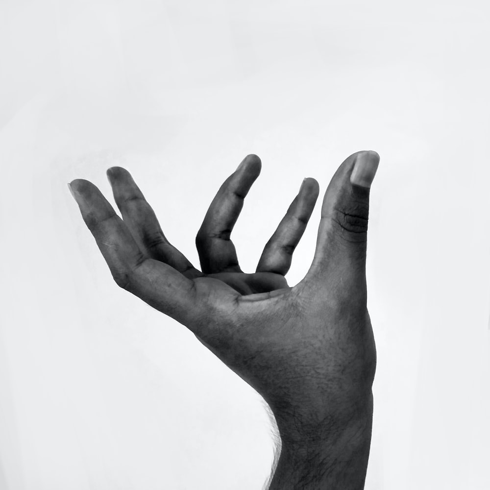 grayscale photo of left human hand