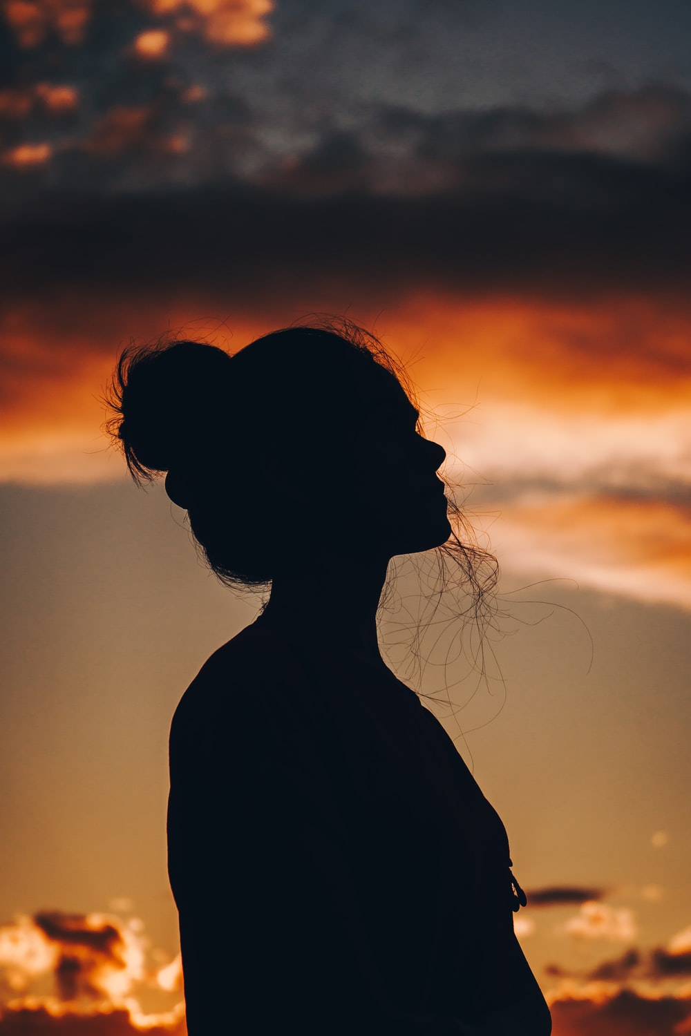 500 Silhouette Pictures Hd Download Free Images On Unsplash