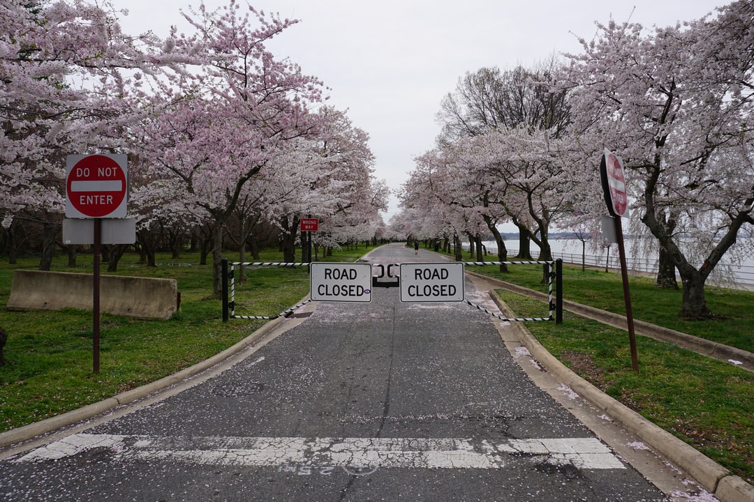 Road closed signs at the road to Hains Point in Washington, DC. The area has been shut down to tourists due to COVID-19. Taken March 24, 2020.