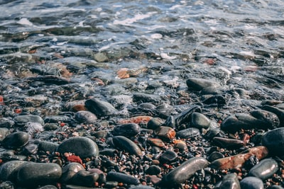 black and gray stones on seashore during daytime
