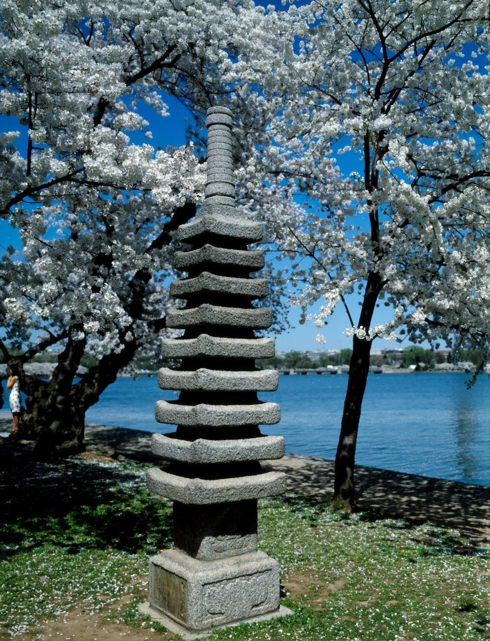 Japanese lantern on the Potomac River Tidal Basin during spring cherry blossom season
