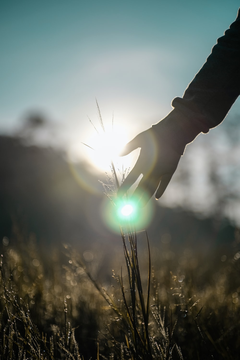 person holding light during daytime