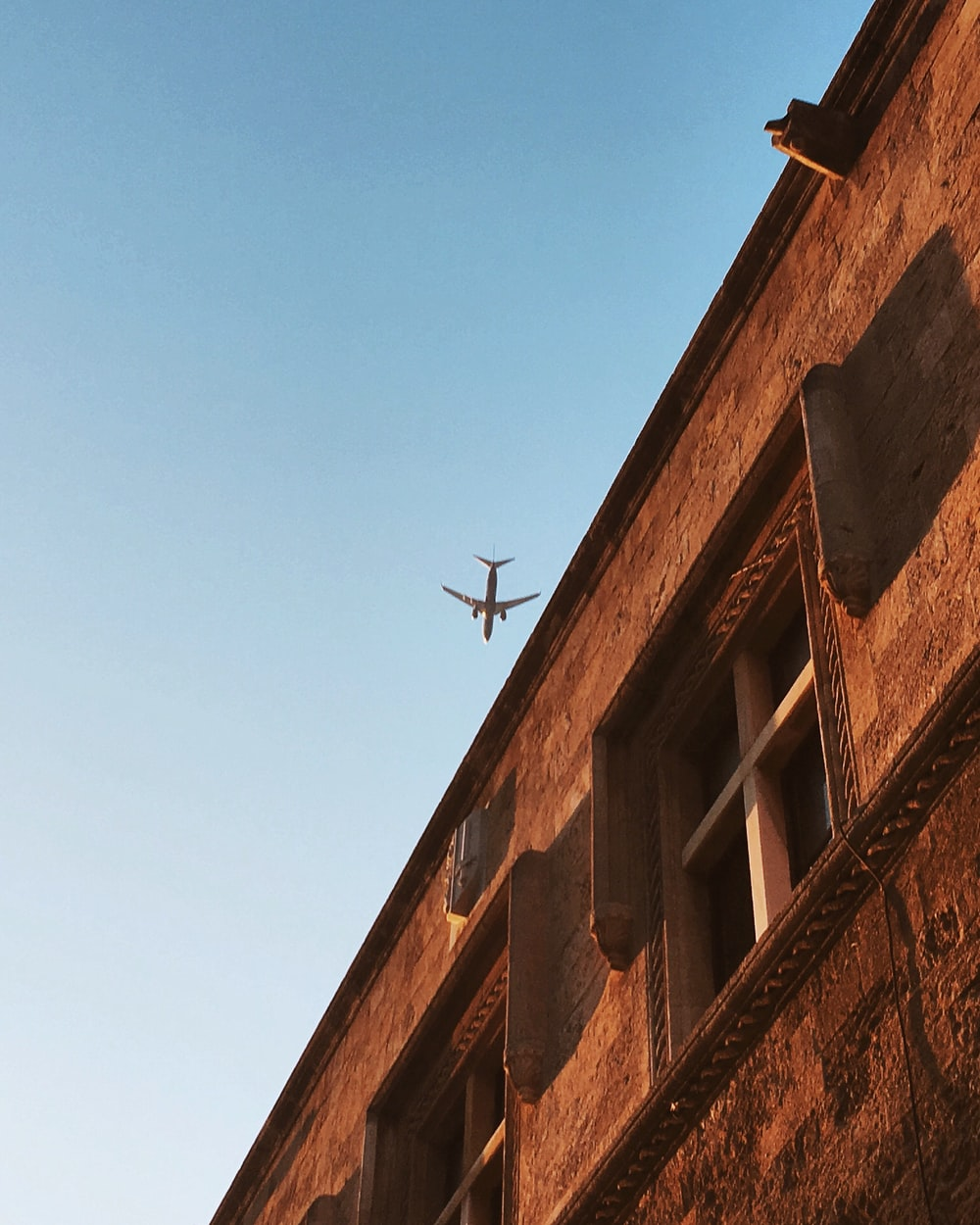 black bird flying over brown concrete building during daytime