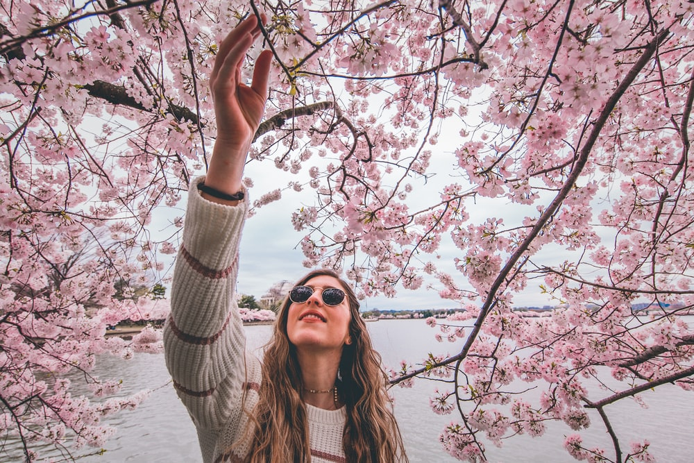 woman in white knit sweater standing near cherry blossom tree during daytime