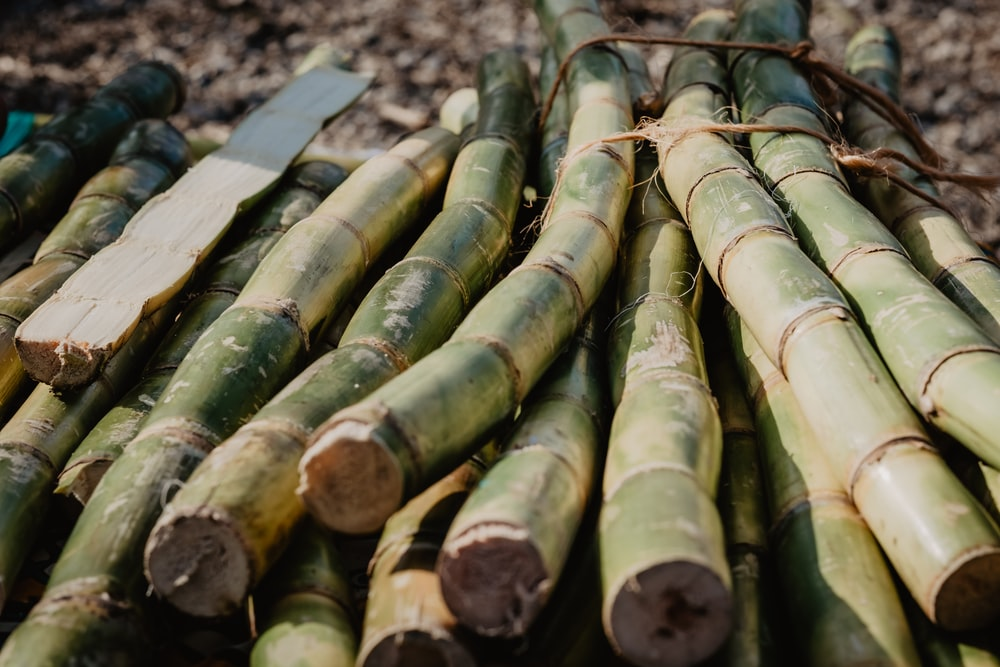 brown bamboo sticks on brown wooden table