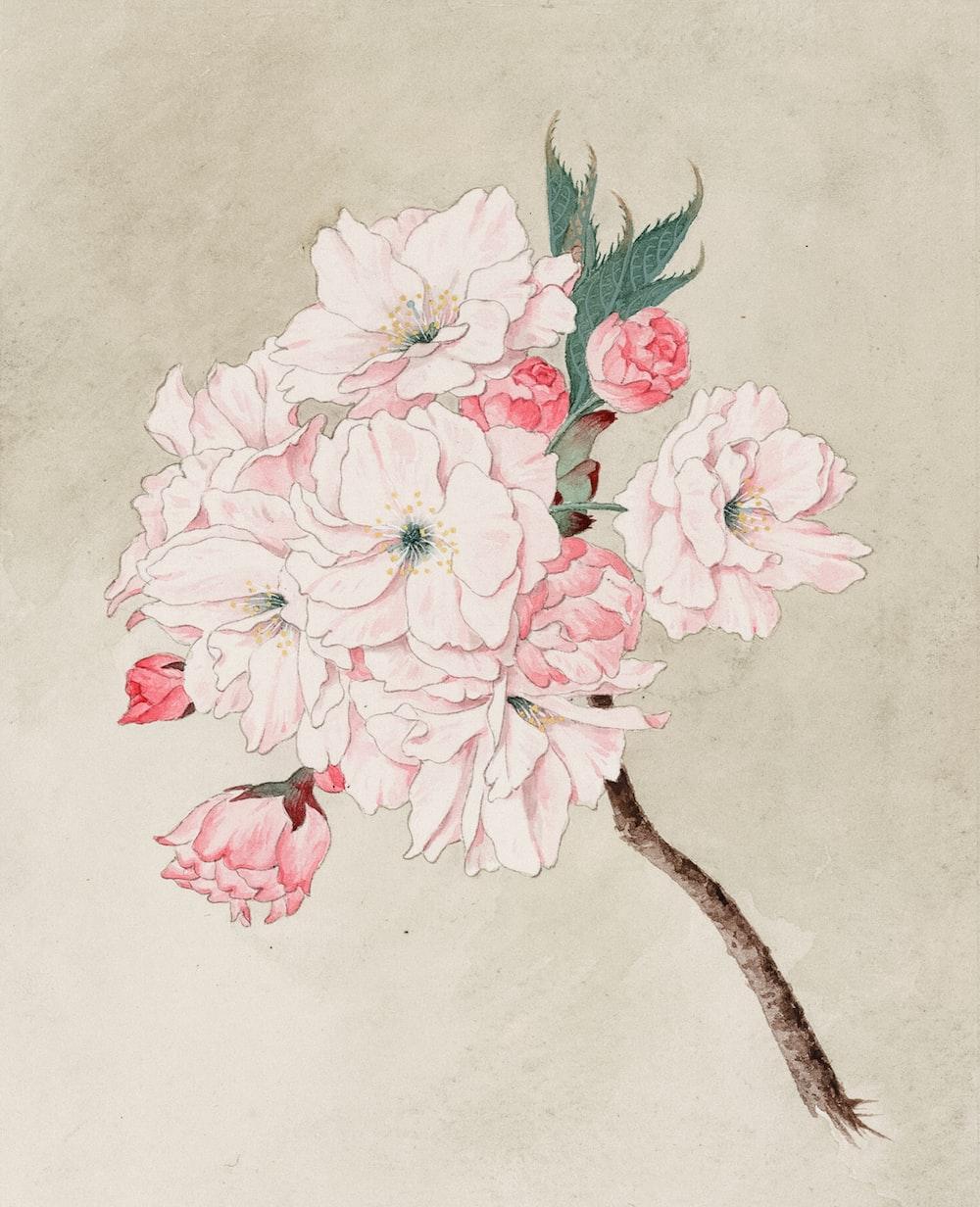Watercolor of fukurokuju (god of longevity) cherry blossoms.