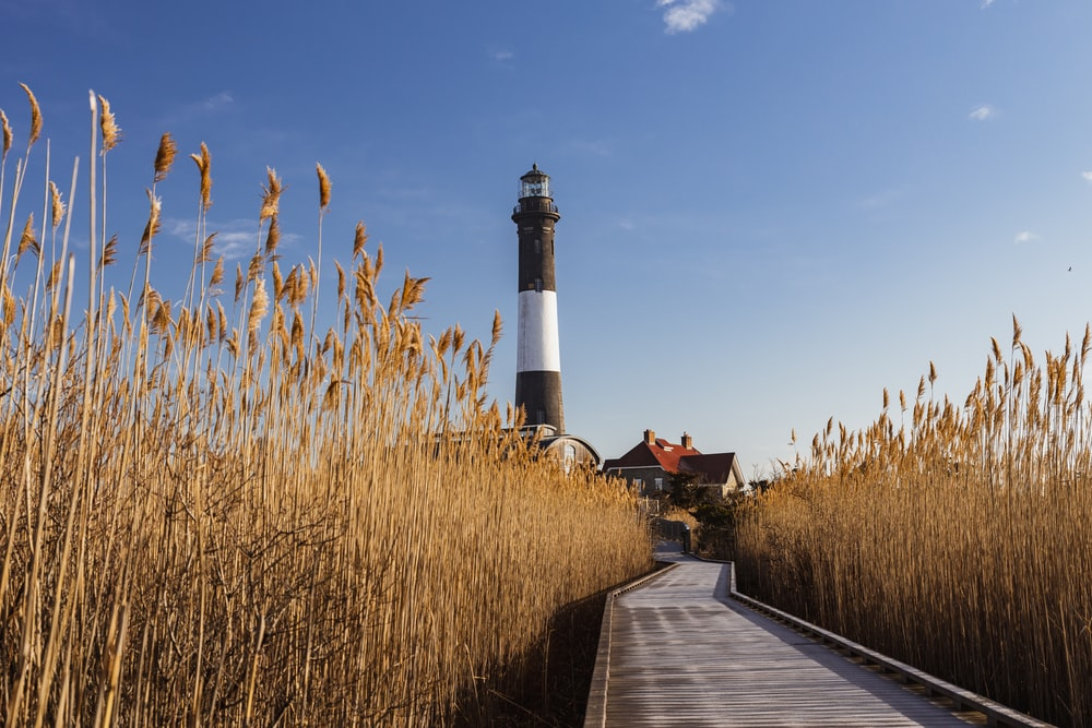white and black lighthouse near brown grass field under blue sky during daytime