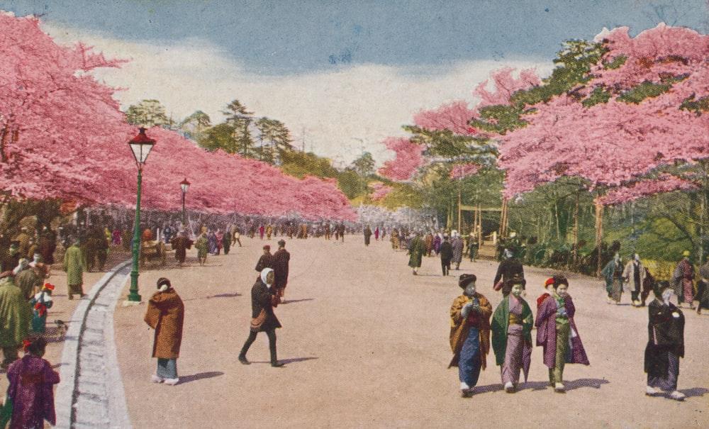 Single cherry blossom at Ueno Park (Flower season at Tokyo)
