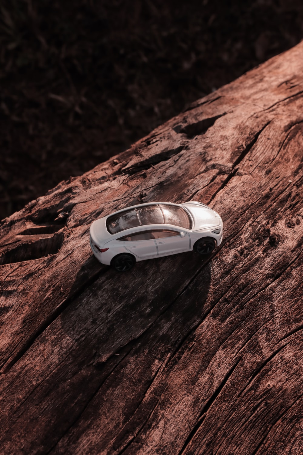 white and black car on brown rock