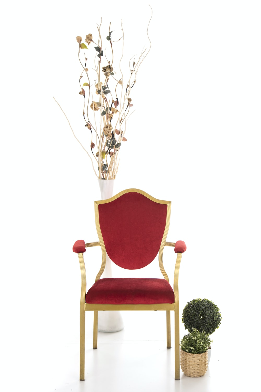 green plant on red chair