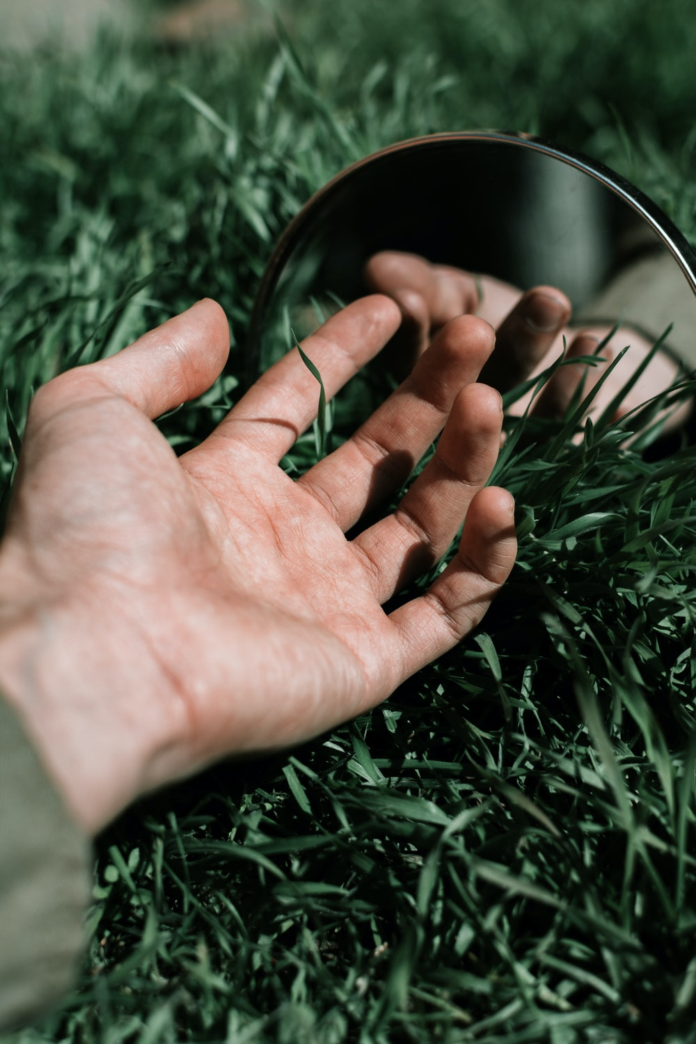persons hand on green grass