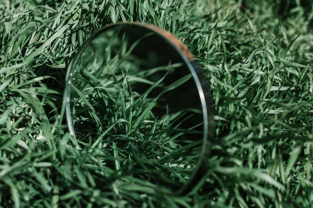 silver round frame on green grass