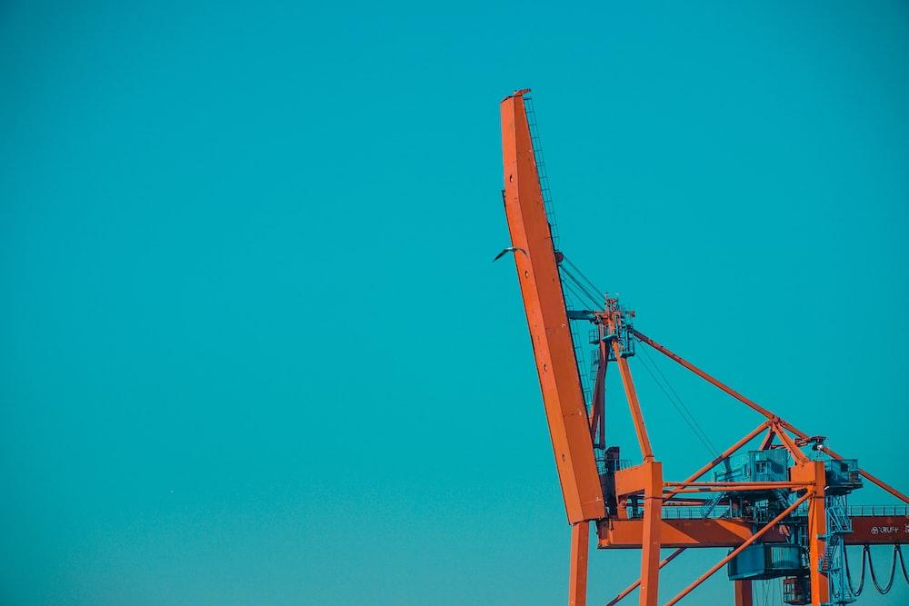 blue crane under blue sky during daytime