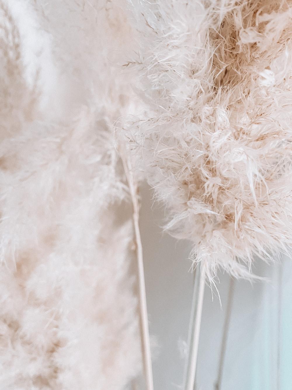 white fur textile near white wall